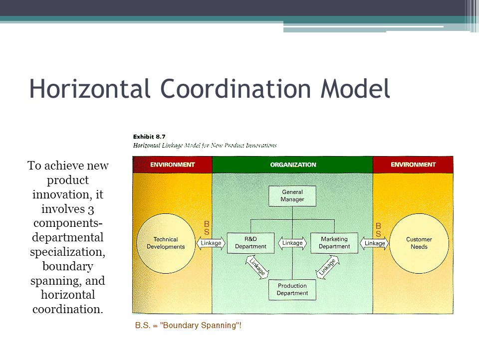 Horizontal Coordination Model To achieve new product innovation, it involves 3 components- departmental specialization, boundary spanning, and horizontal coordination.