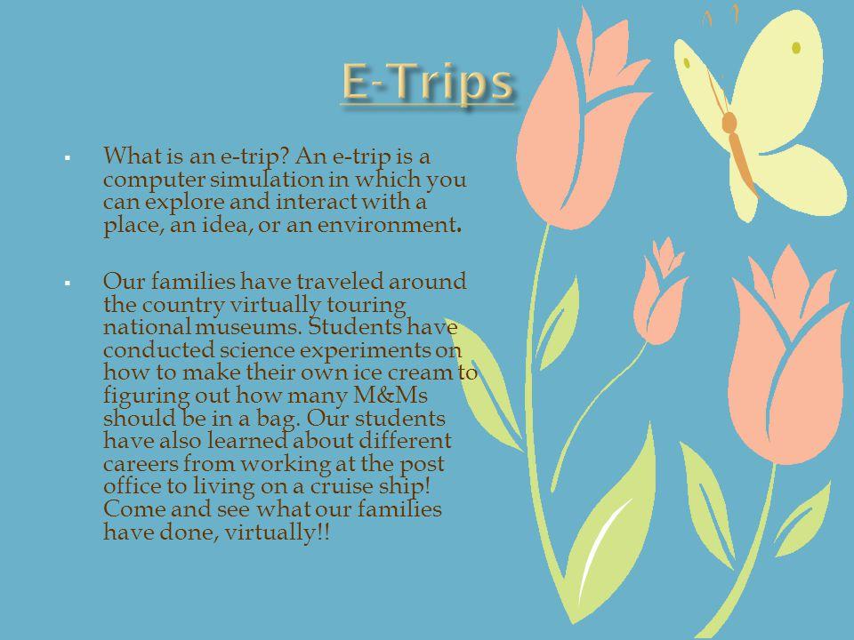 What is an e-trip.