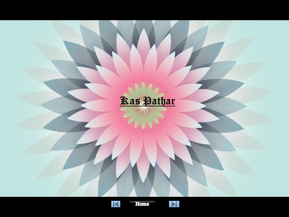 01 Kas Pathar