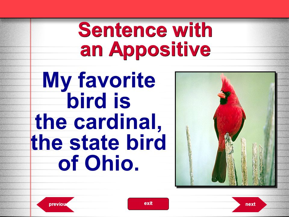 Sentence with an Appositive 6.27 My favorite bird is the cardinal, the state bird of Ohio.