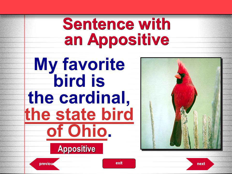 6.28 Appositive nextprevious exit Sentence with an Appositive My favorite bird is the cardinal, the state bird of Ohio.