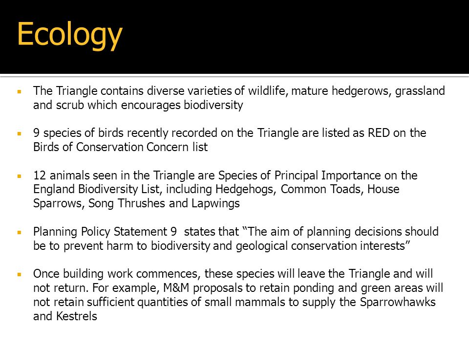 The Triangle contains diverse varieties of wildlife, mature hedgerows, grassland and scrub which encourages biodiversity 9 species of birds recently r