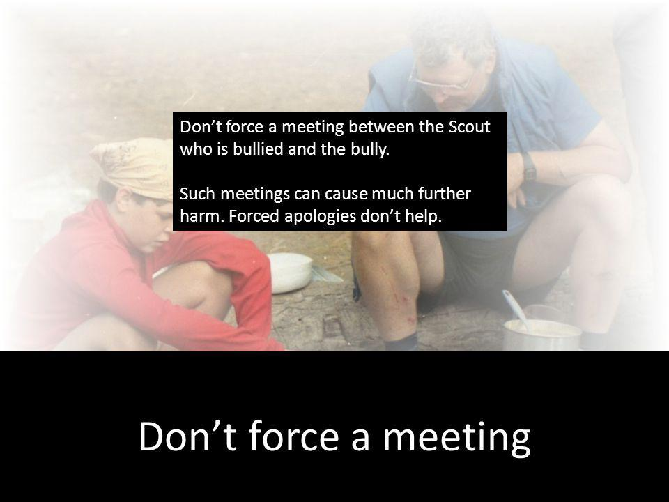 Communicate Dont force a meeting Dont force a meeting between the Scout who is bullied and the bully.