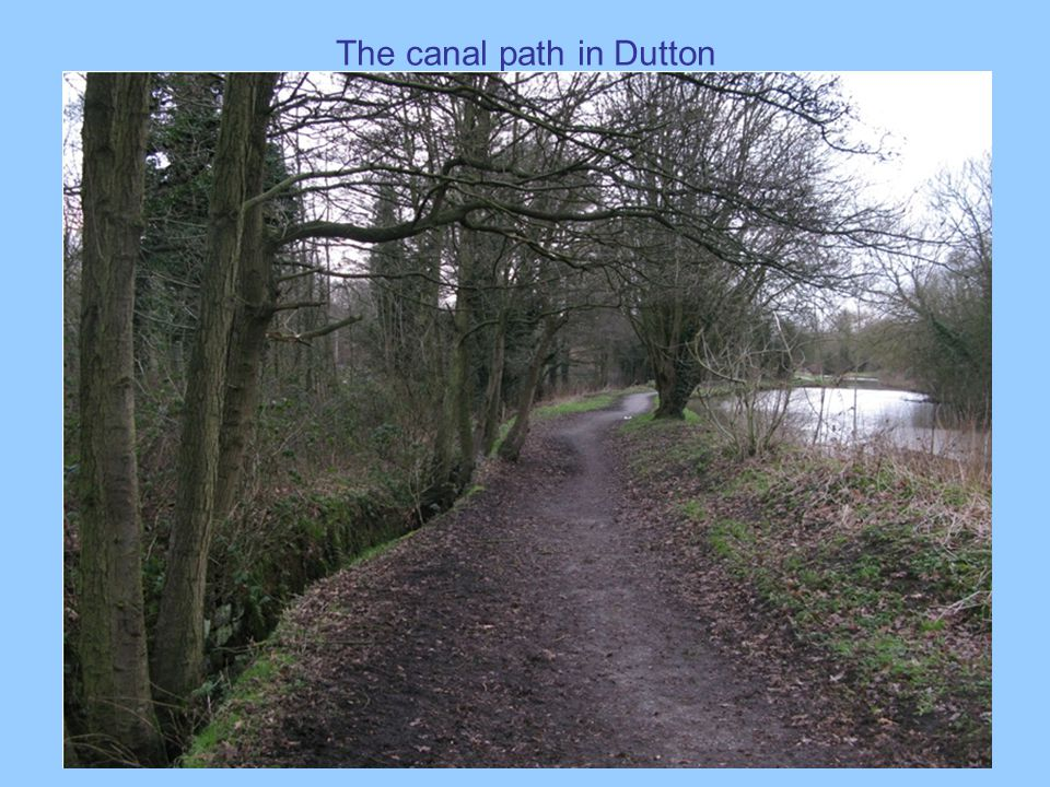 The canal path in Dutton