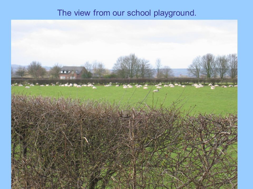 The view from our school playground.