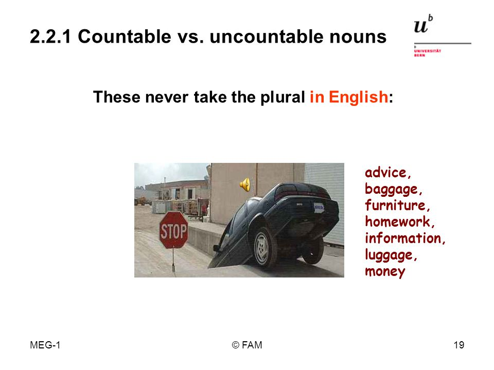 MEG-1© FAM18 2.2.1 Countable vs. uncountable nouns form of a singular, used with singular or plural pronouns / verb forms focus on individual members