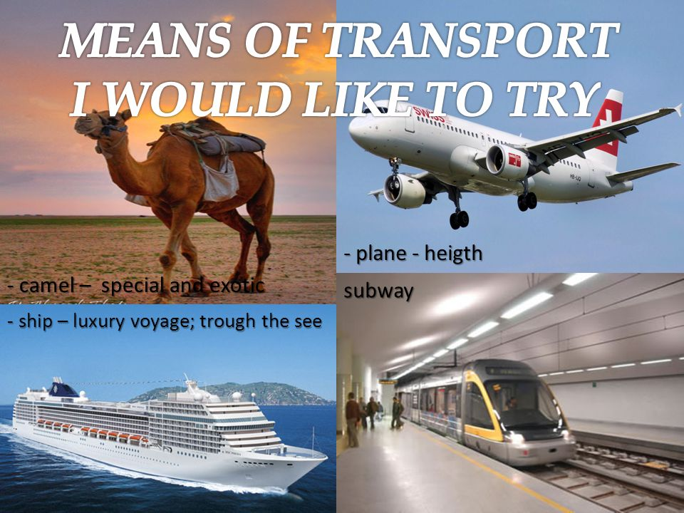 - camel – special and exotic - plane - heigth - ship – luxury voyage; trough the see subway
