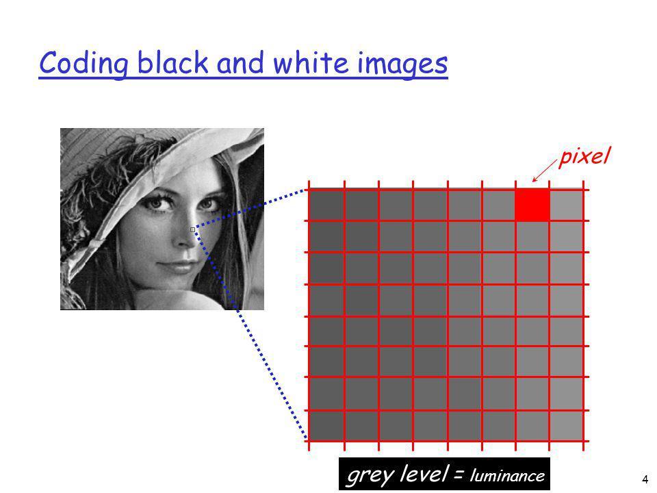 Coding black and white images pixel grey level = luminance 4