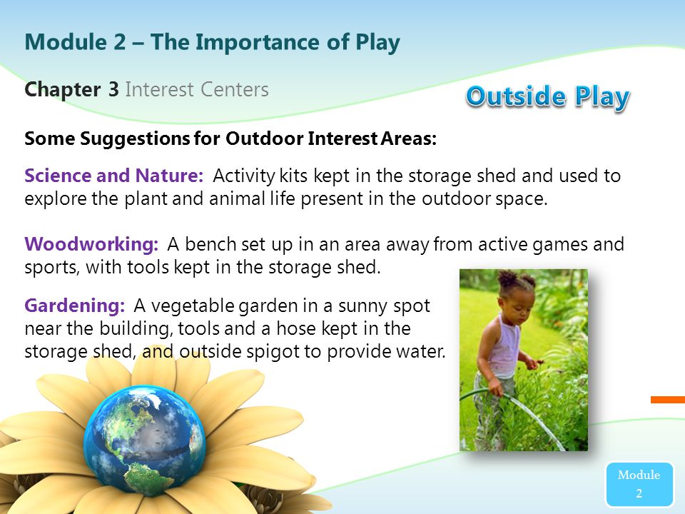 Science and Nature: Activity kits kept in the storage shed and used to explore the plant and animal life present in the outdoor space.