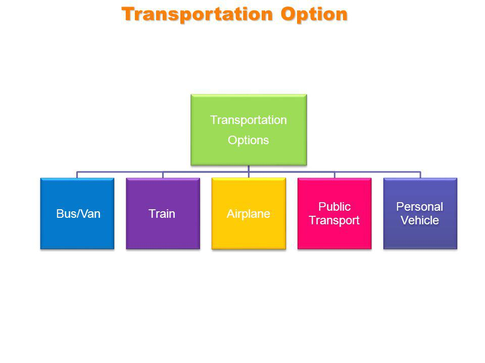 Transportation Options Bus/Van TrainAirplane Public Transport Personal Vehicle Transportation Option