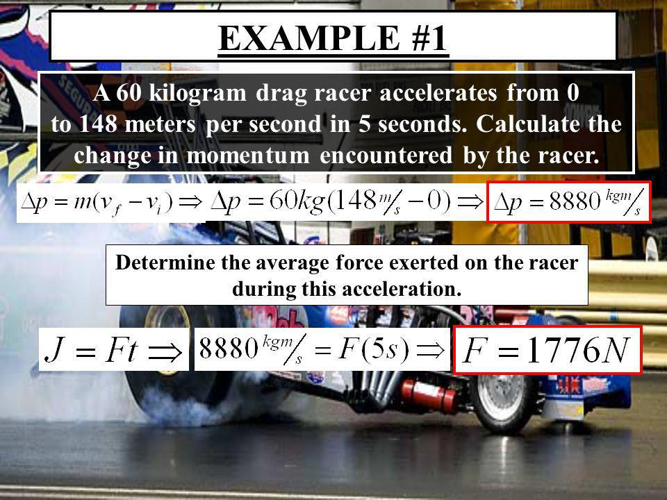EXAMPLE #2 A human cannonball flies into a waiting net and comes to rest in 0.5 seconds.