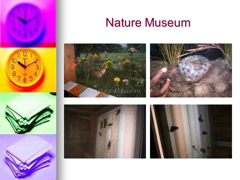 Nature Museum Trips
