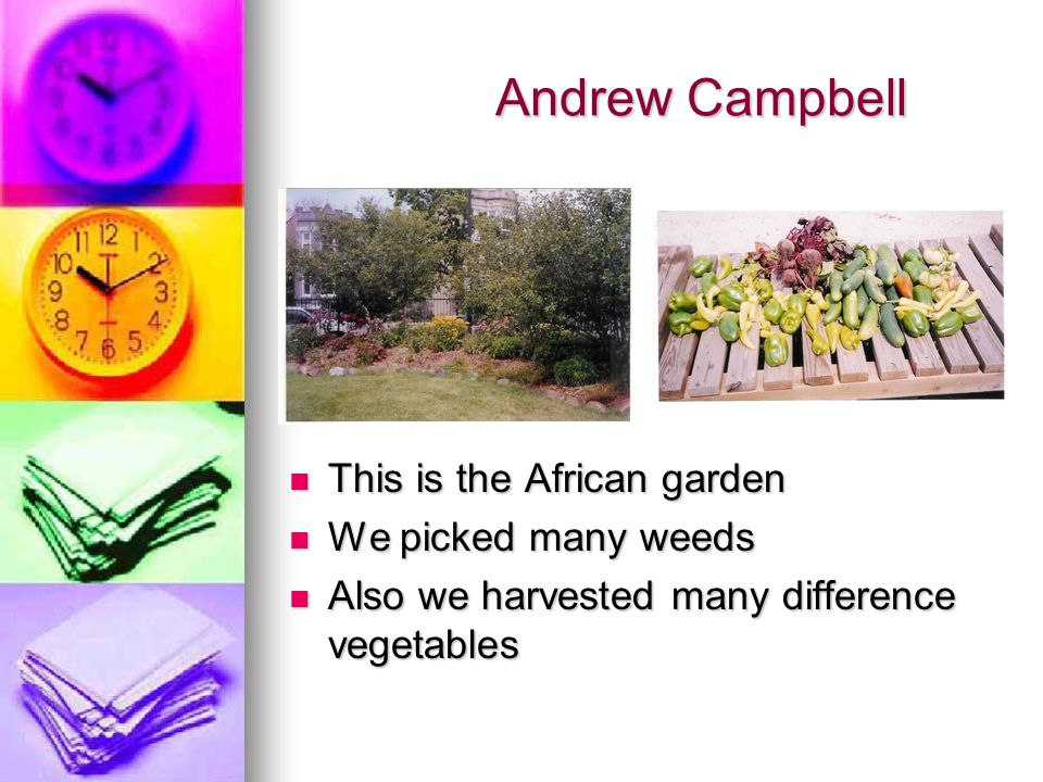 Andrew Campbell Andrew Campbell This is the African garden This is the African garden We picked many weeds We picked many weeds Also we harvested many