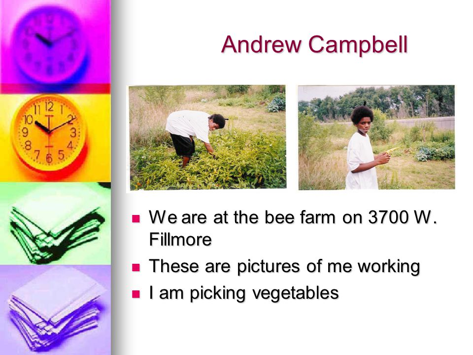 Andrew Campbell Andrew Campbell We are at the bee farm on 3700 W. Fillmore We are at the bee farm on 3700 W. Fillmore These are pictures of me working