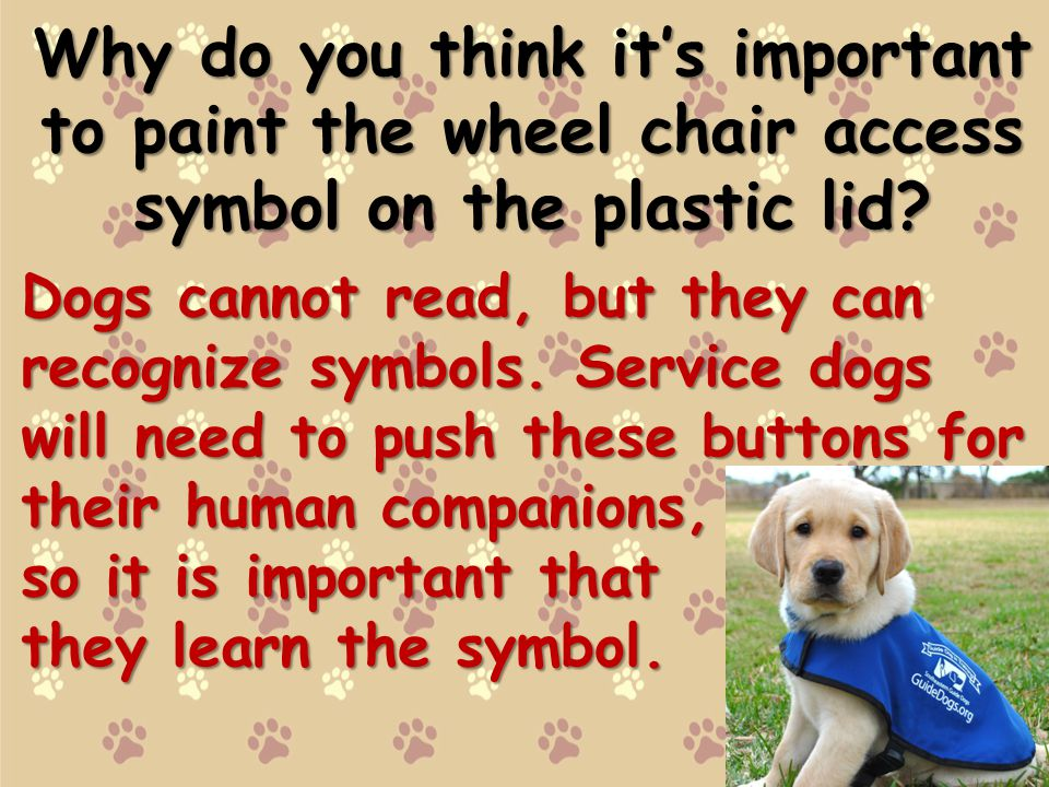 Why do you think its important to paint the wheel chair access symbol on the plastic lid.