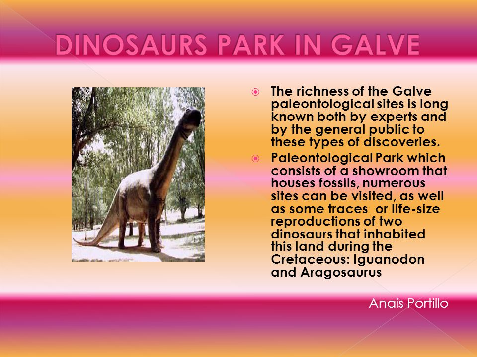 The richness of the Galve paleontological sites is long known both by experts and by the general public to these types of discoveries. Paleontological