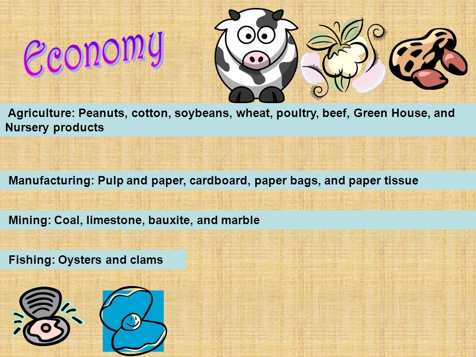 Agriculture: Peanuts, cotton, soybeans, wheat, poultry, beef, Green House, and Nursery products Manufacturing: Pulp and paper, cardboard, paper bags, and paper tissue Mining: Coal, limestone, bauxite, and marble Fishing: Oysters and clams