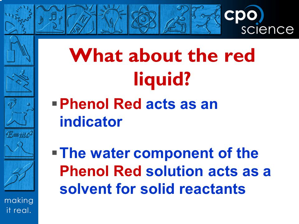 What about the red liquid? Phenol Red acts as an indicator The water component of the Phenol Red solution acts as a solvent for solid reactants