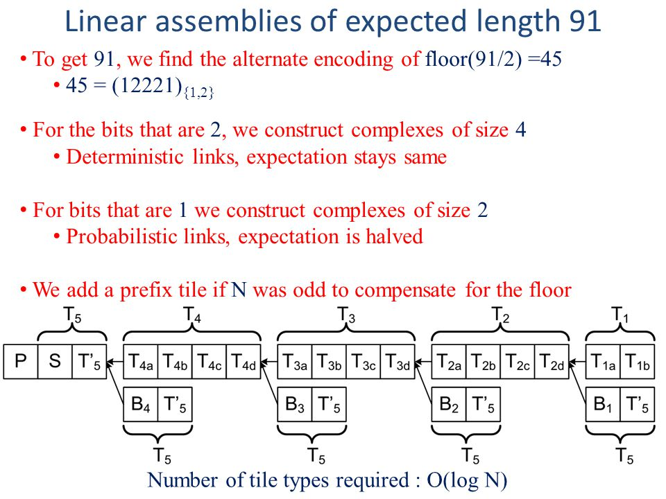 Linear assemblies of expected length 91 Number of tile types required : O(log N) To get 91, we find the alternate encoding of floor(91/2) =45 45 = (12