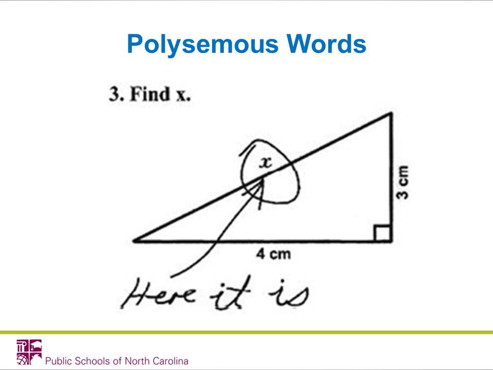 Polysemous Words