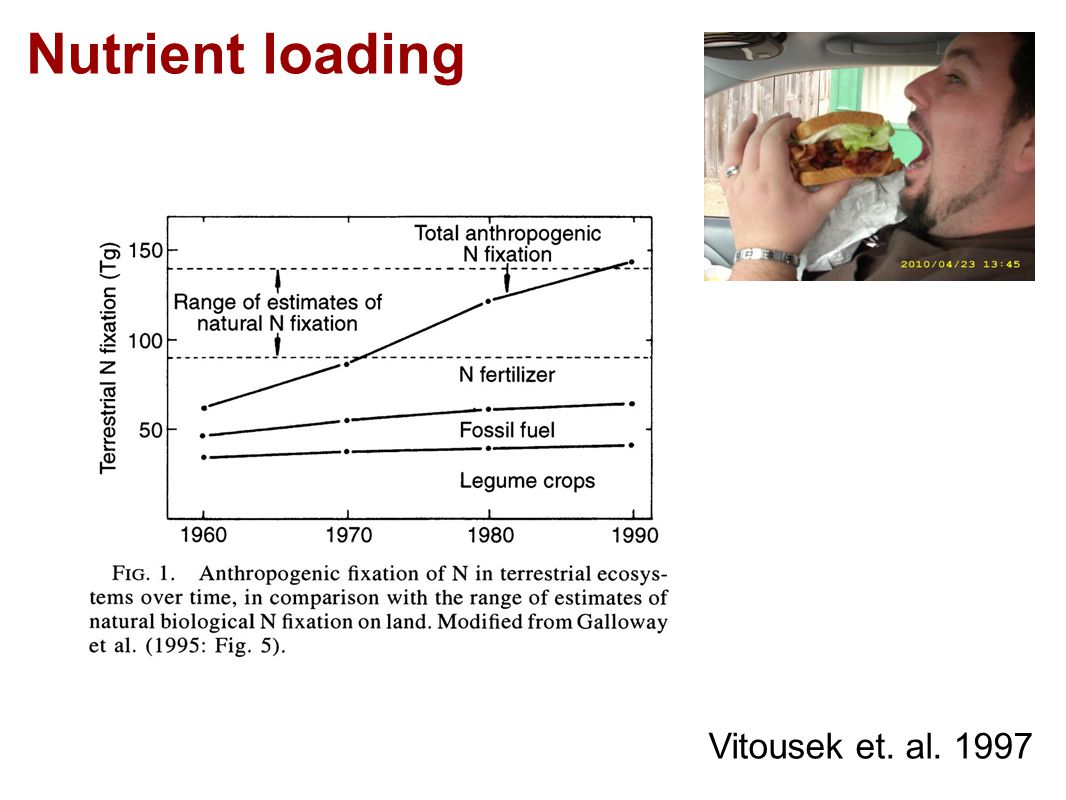 Nutrient loading Vitousek et. al. 1997
