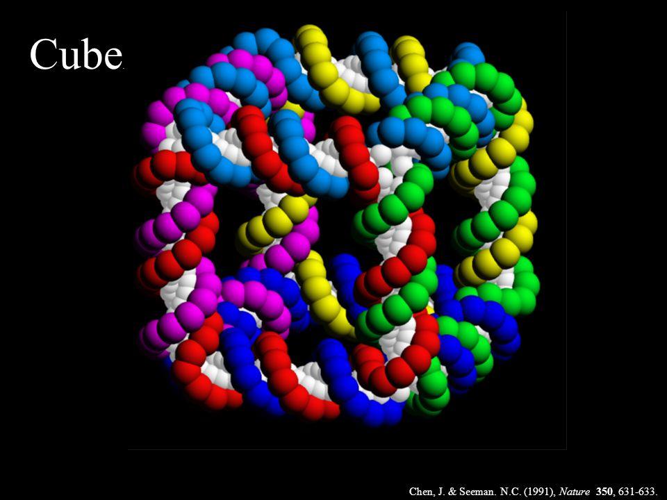 Chen, J. & Seeman. N.C. (1991), Nature 350, 631-633.. Cube..