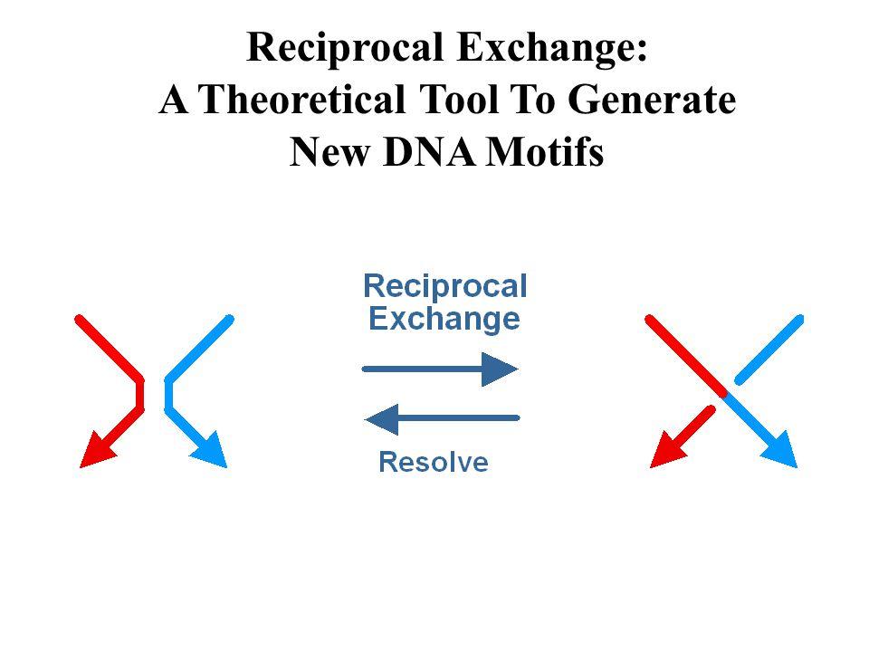 A Method to Establish DNA Motif Flexibility