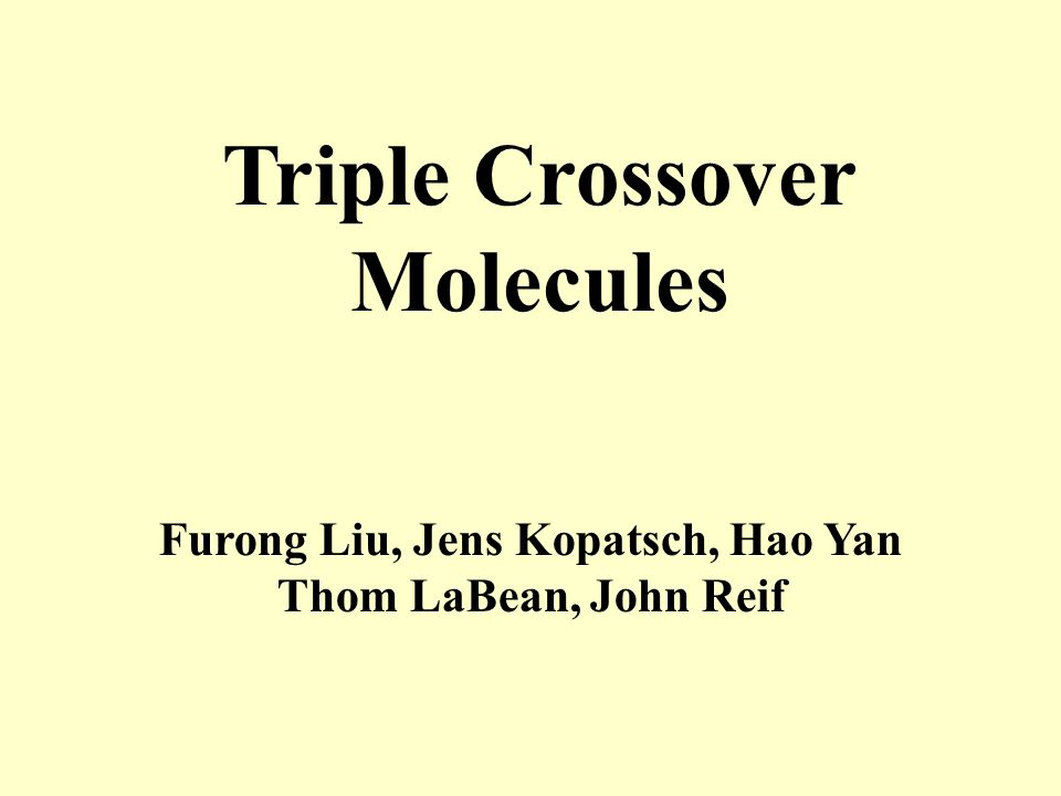 Triple Crossover Molecules Furong Liu, Jens Kopatsch, Hao Yan Thom LaBean, John Reif