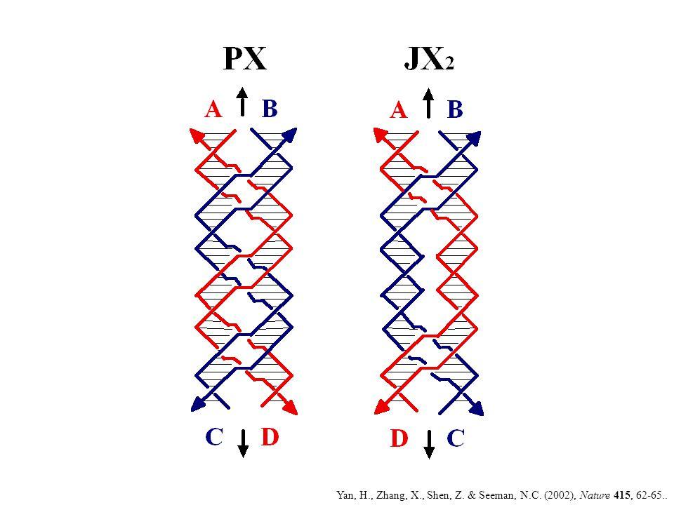 Yan, H., Zhang, X., Shen, Z. & Seeman, N.C. (2002), Nature 415, 62-65..