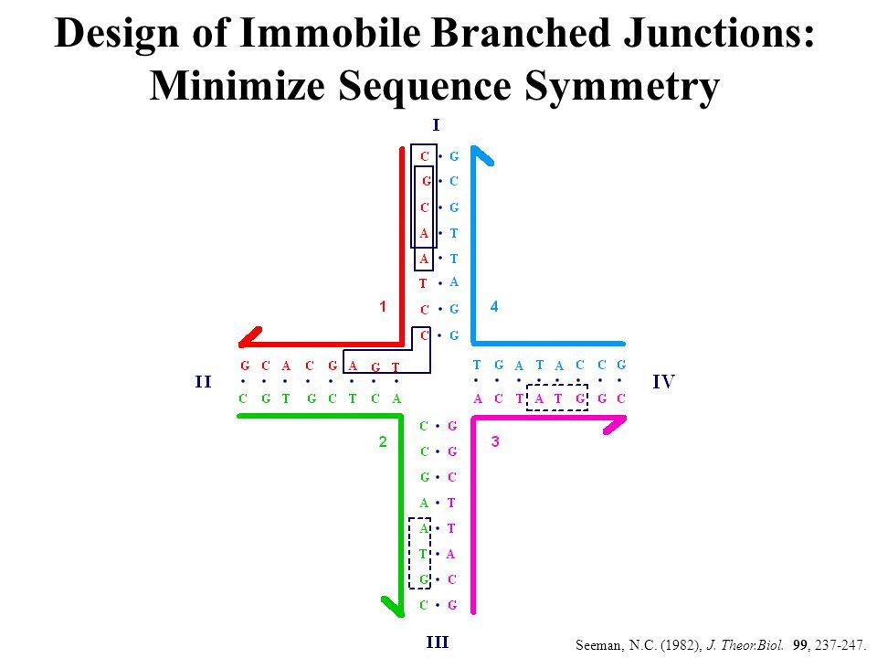PX DNA Seeman, N.C. (2001) NanoLetters 1, 22-26.