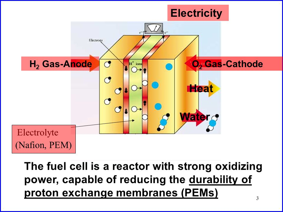 4 Reactions in Fuel Cells Cathode Four-electron reduction of oxygen: O 2 + 4H + + 4e - 2H 2 O Anode Oxidation of hydrogen: 2H 2 4H + + 4e - Complications Two-electron reduction of oxygen: O 2 + 2H + + 2e - H 2 O 2 Also expected HO· + H 2 O 2 HO 2 · + H 2 O and, in neutral solutions, HO 2 · + H 2 O O 2 · + H 3 O + ) HO·, HO 2 ·, and O 2 · are lethal reactive intermediates Early events can be detected by Direct ESR or Spin Trapping