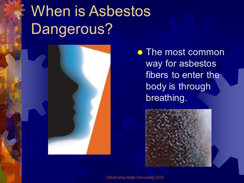 Oklahoma State University EHS When is Asbestos Dangerous? The most common way for asbestos fibers to enter the body is through breathing.