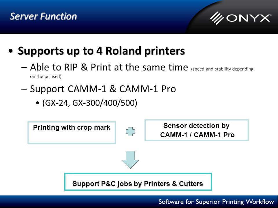 Server Function Server Function Supports up to 4 Roland printersSupports up to 4 Roland printers –Able to RIP & Print at the same time (speed and stab