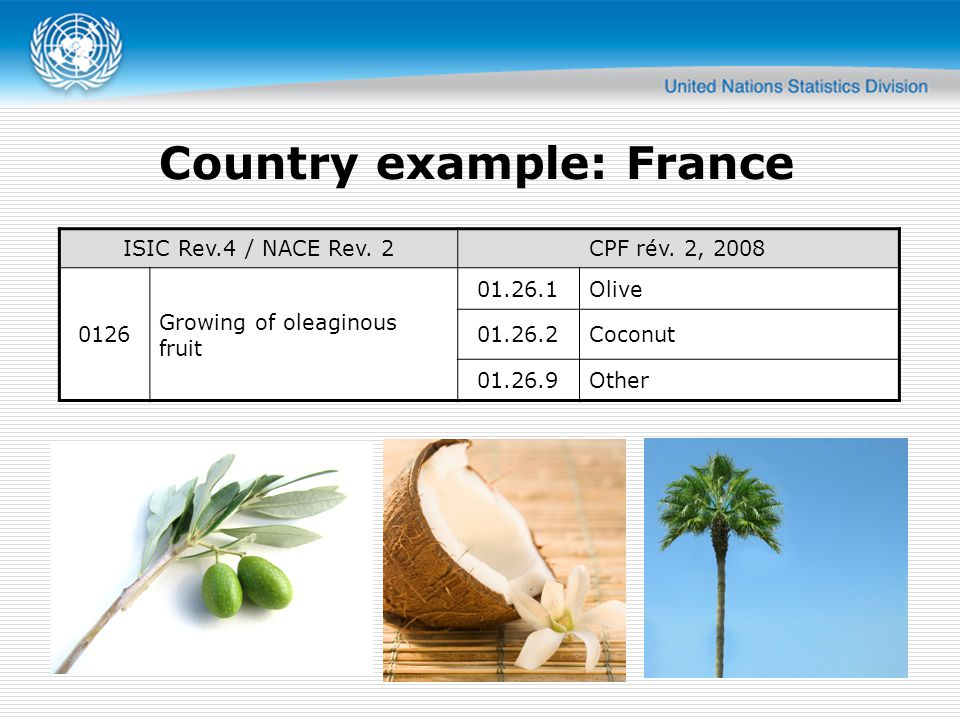 Country example: France ISIC Rev.4 / NACE Rev. 2CPF rév.