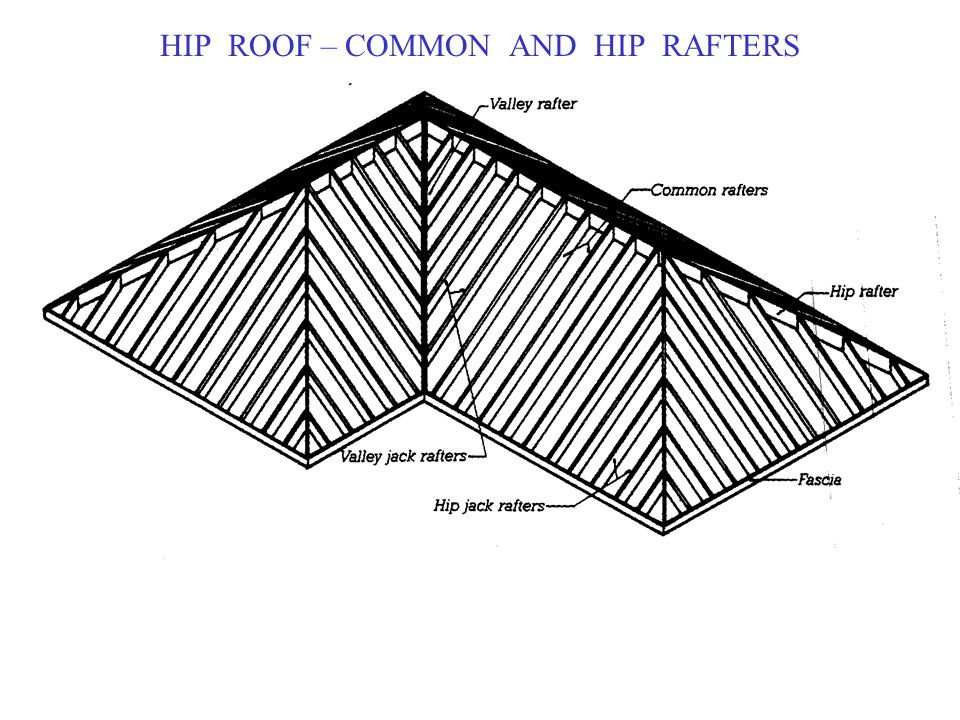 HIP ROOF – COMMON AND HIP RAFTERS