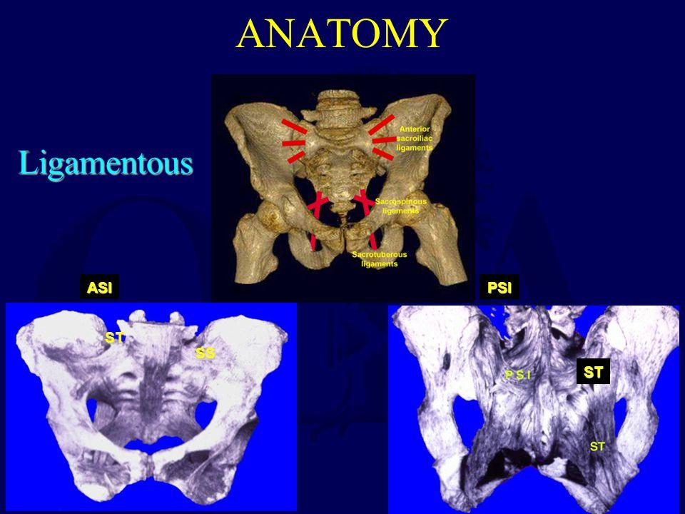 ANATOMY Ligamentous ASI ST SS PSI ST