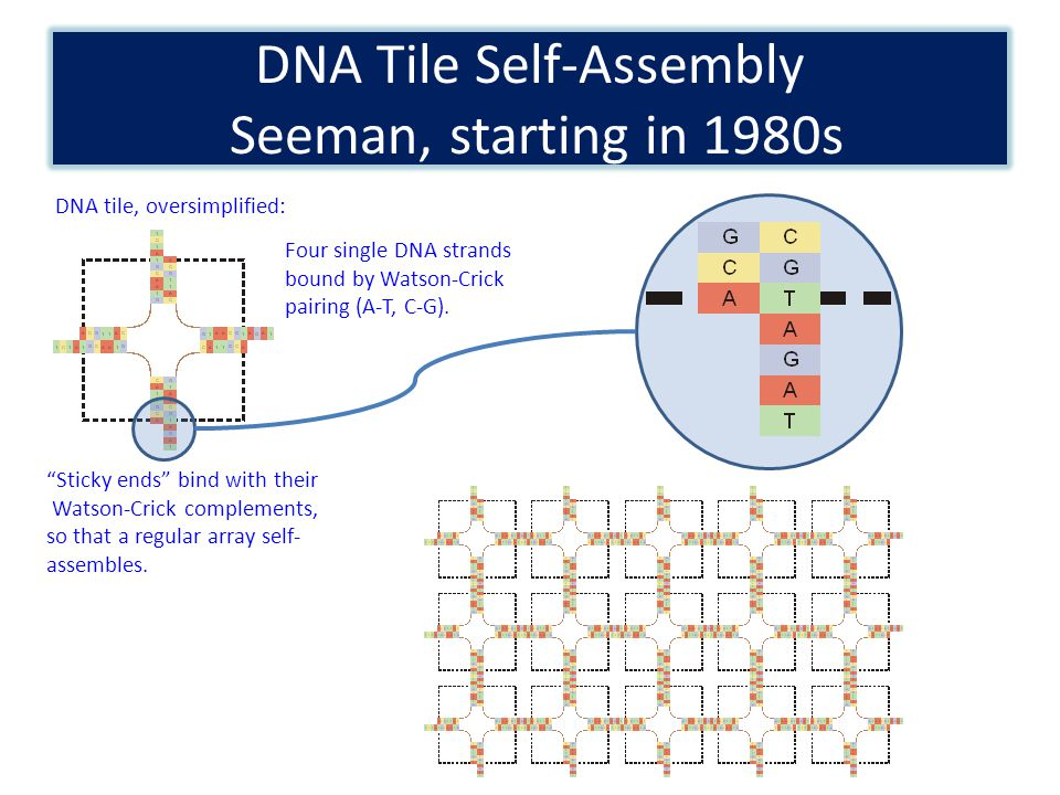 Cooperation is key to computing with tile-assembly model.