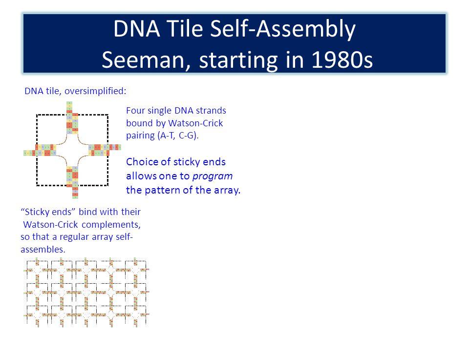 Nanoscale Sierpinski Triangles From DNA Tiles Rothemund, Papadakis, and Winfree, 2004 From: Algorithmic Self- Assembly of DNA Sierpinski Triangles Rothemund PWK, Papadakis N, Winfree E PLoS Biology Vol.