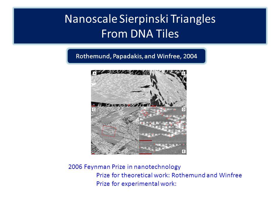 Nanoscale Sierpinski Triangles From DNA Tiles Rothemund, Papadakis, and Winfree, 2004 2006 Feynman Prize in nanotechnology Prize for theoretical work: Rothemund and Winfree Prize for experimental work: