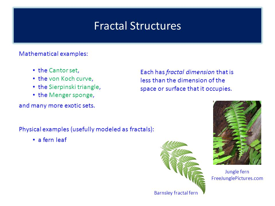 Fractal Structures Mathematical examples: the Cantor set, the von Koch curve, the Sierpinski triangle, the Menger sponge, and many more exotic sets.