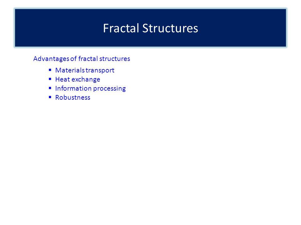 Fractal Structures Advantages of fractal structures Materials transport Heat exchange Information processing Robustness