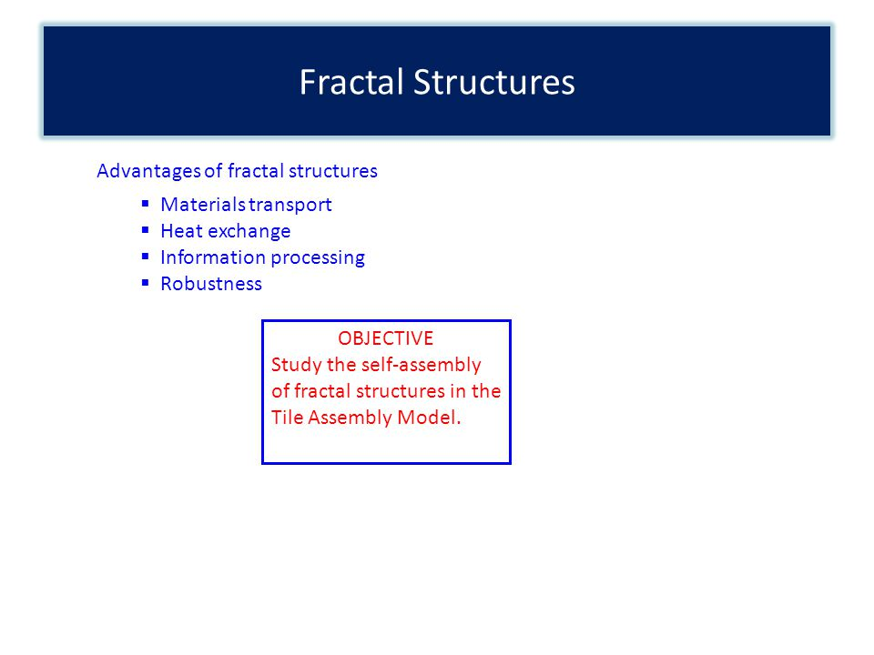 Fractal Structures Advantages of fractal structures Materials transport Heat exchange Information processing Robustness OBJECTIVE Study the self-assembly of fractal structures in the Tile Assembly Model.