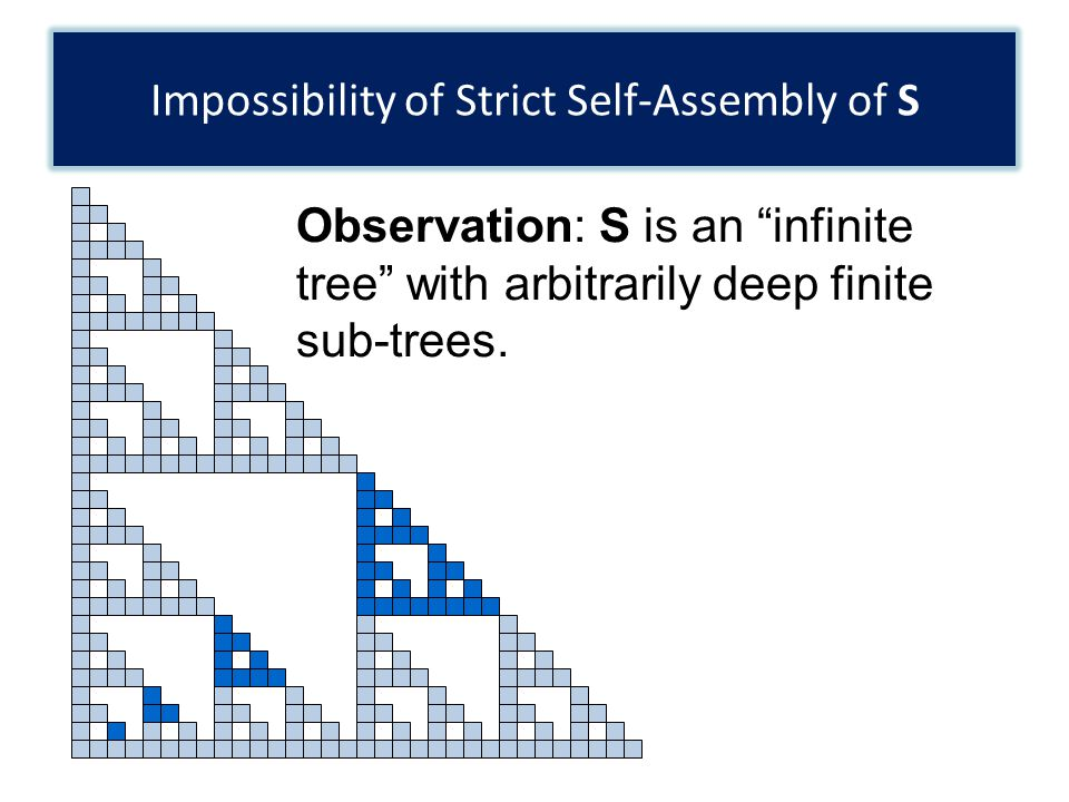 Impossibility of Strict Self-Assembly of S Observation: S is an infinite tree with arbitrarily deep finite sub-trees.