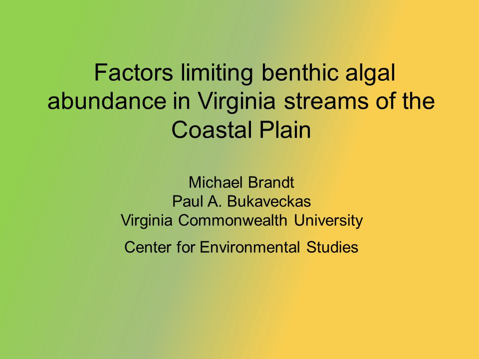 Factors limiting benthic algal abundance in Virginia streams of the Coastal Plain Michael Brandt Paul A.