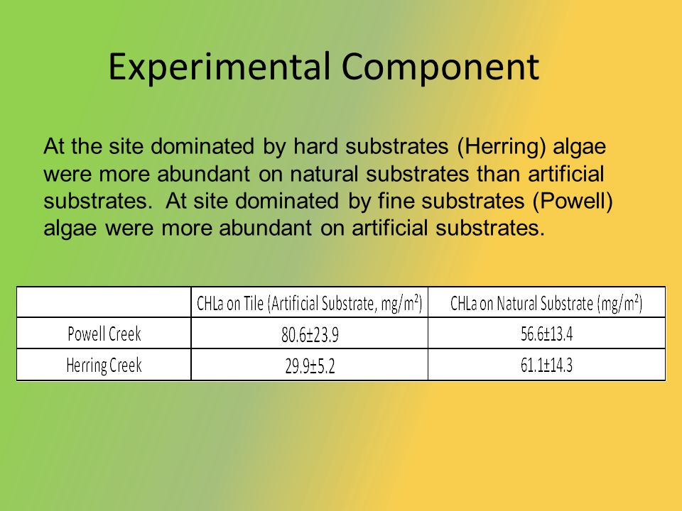 Experimental Component At the site dominated by hard substrates (Herring) algae were more abundant on natural substrates than artificial substrates.