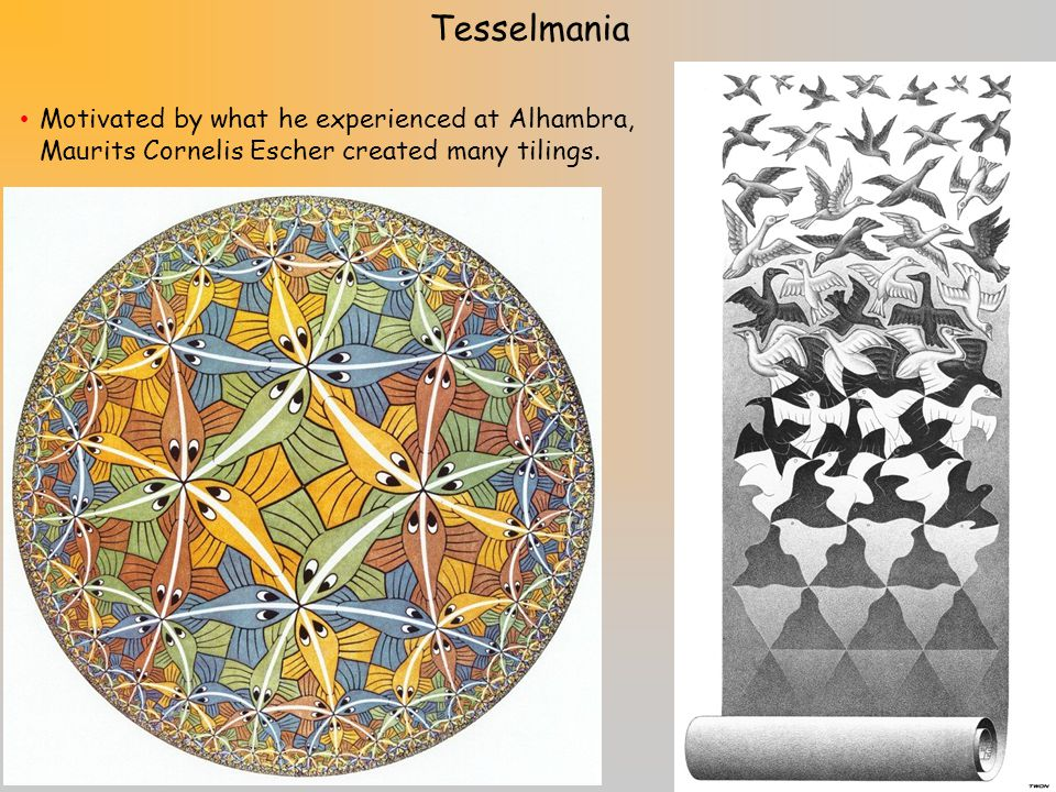 There are only 8 semiregular tessellations, and weve now seen two of them: the 4.6.12 and the 3.3.4.3.4 Your in-class construction will help you find the remaining 6 semiregular tessellations.