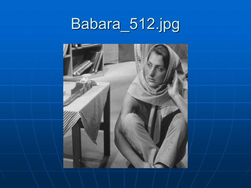 Babara_512.jpg