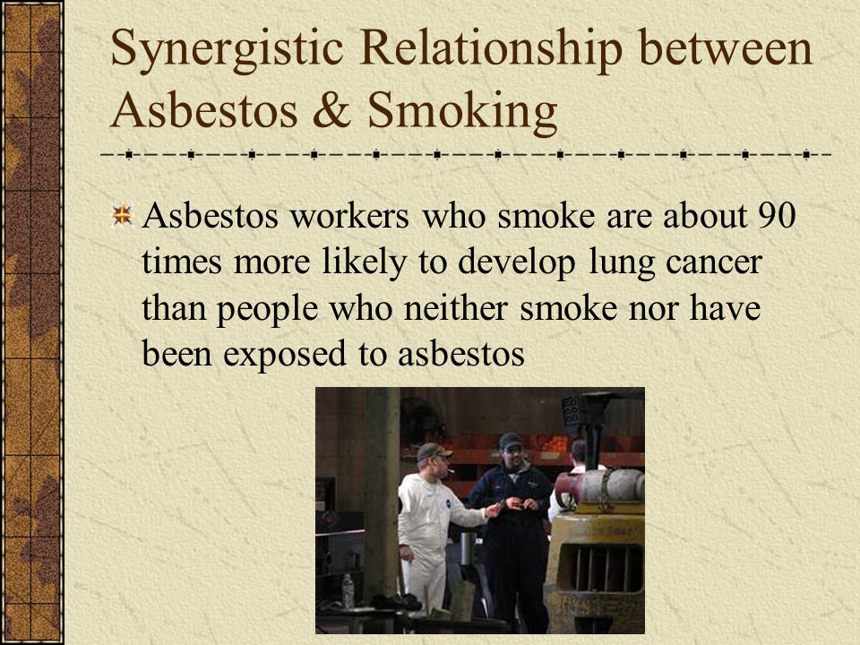 Synergistic Relationship between Asbestos & Smoking Asbestos workers who smoke are about 90 times more likely to develop lung cancer than people who neither smoke nor have been exposed to asbestos