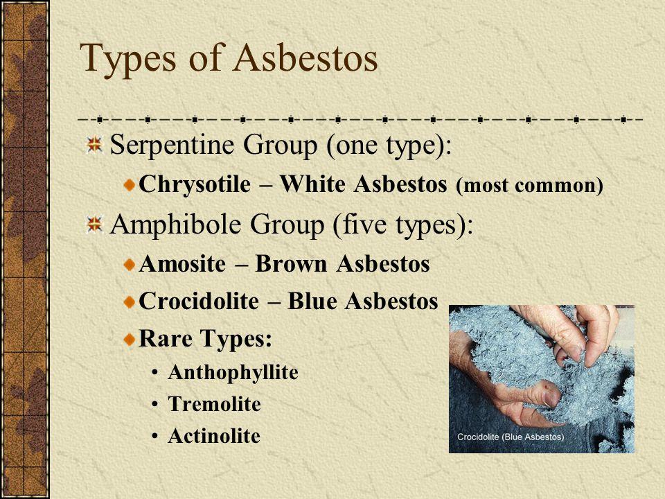 Types of Asbestos Serpentine Group (one type): Chrysotile – White Asbestos (most common) Amphibole Group (five types): Amosite – Brown Asbestos Crocidolite – Blue Asbestos Rare Types: Anthophyllite Tremolite Actinolite