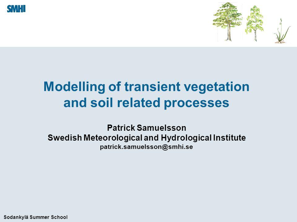 Sodankylä Summer School Numerical solution of the soil energy equations DjDj TjTj j+1 G j+1/2 G j-1/2 Viterbo (2004)